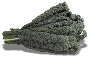 Kale - Black Cabbage
