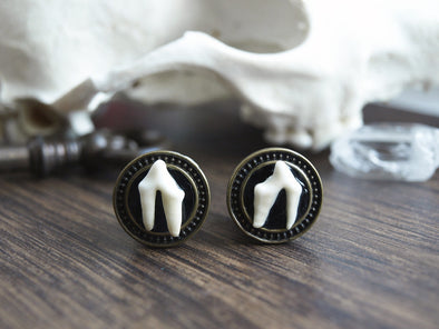 small Fox Teeth Plugs #033 - Fux Jewellery