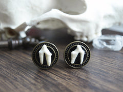 small Fox Teeth Plugs #033