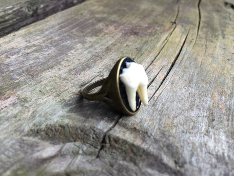 Bronze Tooth Ring #026