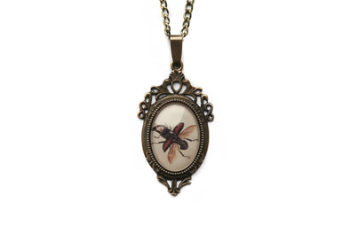 Flying Stag Beetle Necklace #N60 - Fux Jewellery