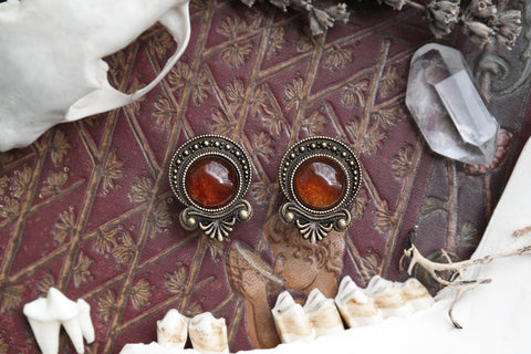 bronze 'Artio' Plugs #823