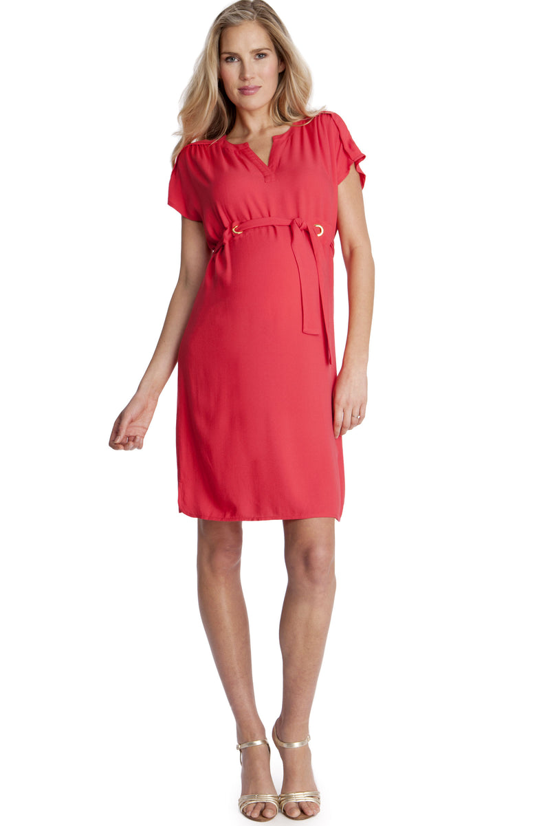 Seraphine Camden Woven Maternity Dress