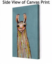 Load image into Gallery viewer, Baby Llama on Blue - Canvas Giclée Print