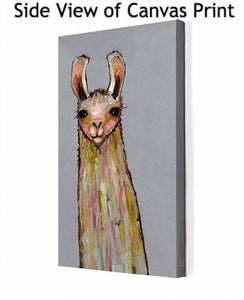Baby Llama on Grey - Canvas Giclée Print
