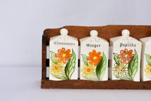Load image into Gallery viewer, Vintage spice rack, set of 6
