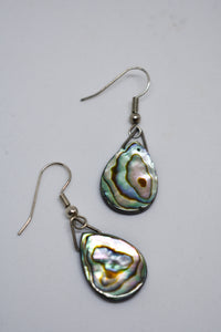 Paua earrings