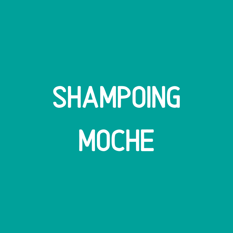 "PROMO SAVON MOCHE Shampoing cheveux normaux ""Love is in the hair"""