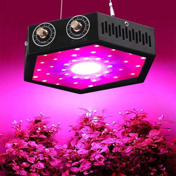 Why Growers Are Choosing LED Grow Lights?