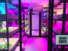6 Tips For Using Indoor LED Grow Lights