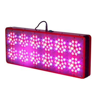 900W Apollo 12 LED Grow Light
