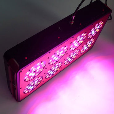 600W Apollo 8 LED Grow Light