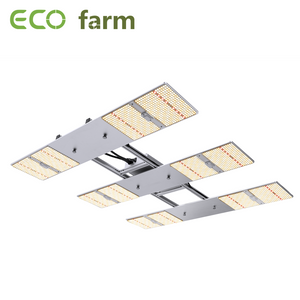 ECO Farm 330W / 500W / 630W ECOH Quantum Board met Samsung 301H & LH351H Chips en Meanwell Driver commerciële LED Grow Light