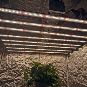 ECO Farm 600W / 800W / 1000W Full Spectrum LED-groeilichtstrips STG-serie