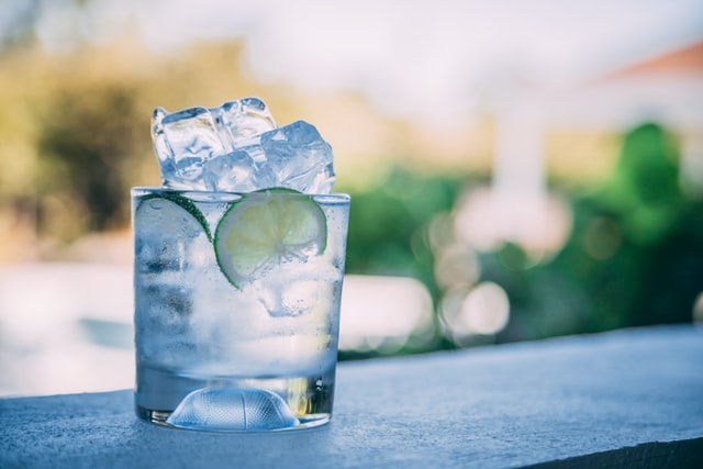 4 of the Best Gins for Premium Gin-Based Cocktails