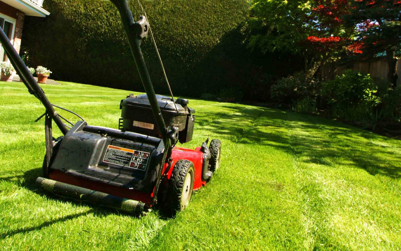 How to change the oil in your lawn mower?