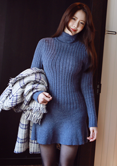 Turtle Neck Lined Knitted Dress
