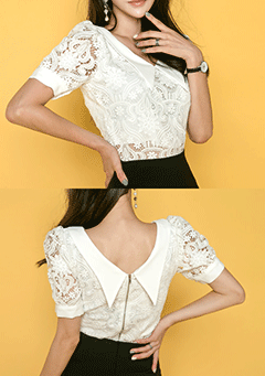 Lace Collar Zip Up Blouse