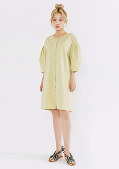 Semi Puff Sleeve Dress