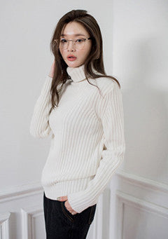 Knit A Second Chance Turtleneck Knit Sweater
