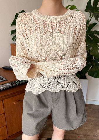 Lily Crochet See-Through Knit Top