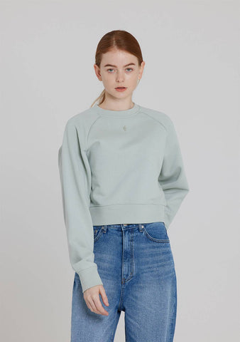Crop Laglan Sweatshirt (Mint)