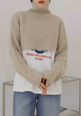 Ssen Turtleneck Wool Knit Top [Beige]