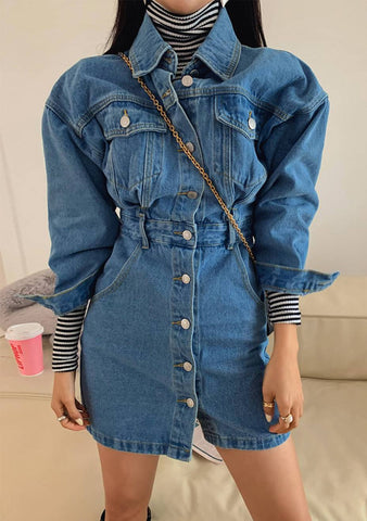 A Big Adventure Denim Mini Dress