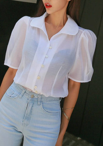 The Puff Sleeve Sheer Blouse