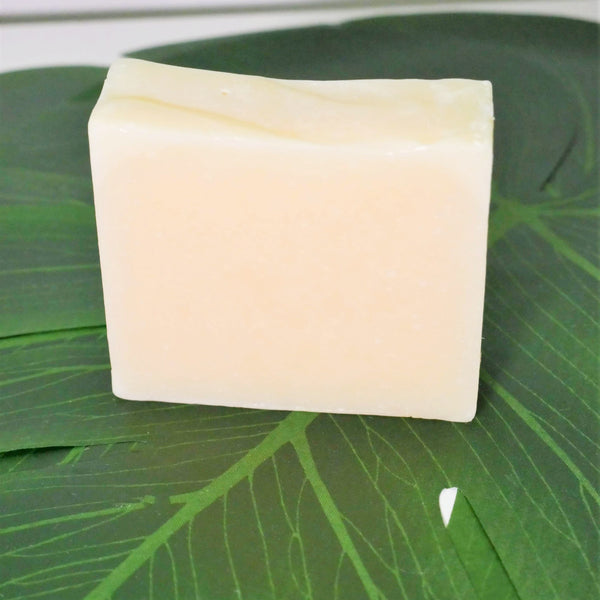 Natural Sea Moss Soap Bar