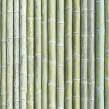 Load image into Gallery viewer, wallpaper, wallpapers, organic, wood, bamboo