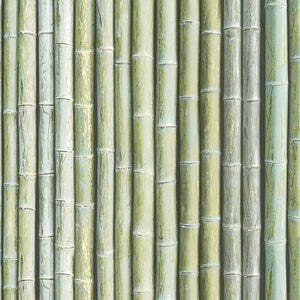 wallpaper, wallpapers, organic, wood, bamboo