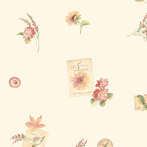 wallpaper, wallpapers, floral, flowers, leaves, bugs, butterfly, seed packets