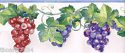 White bg.w/ multi color fruit die cut Border  BB75955DC
