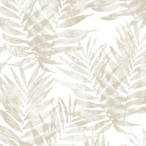 wallpaper, wallpapers, leaves, palm