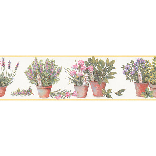 wallpaper, wallpapers, border, botanical, leaves, flowers, herbs, flower pots, name tags, solid edge