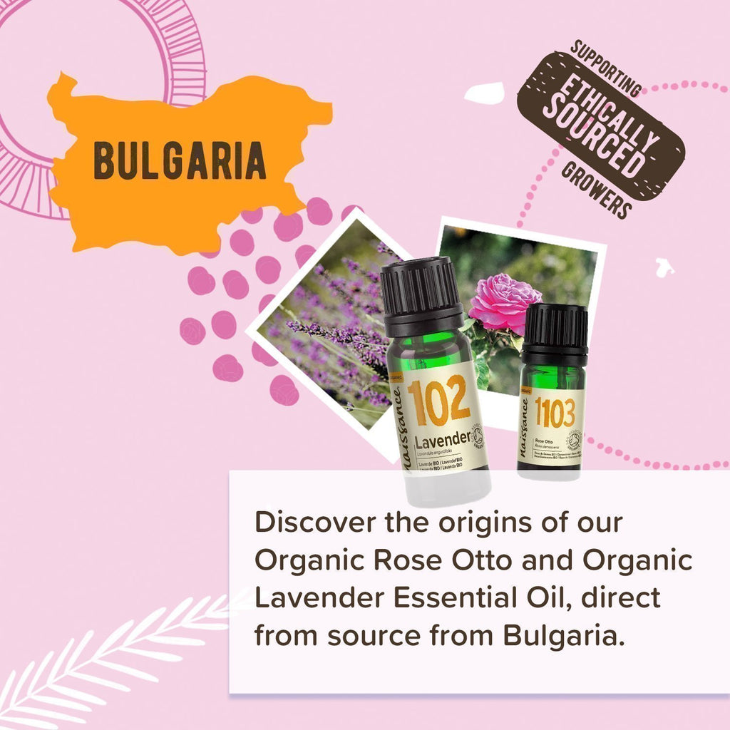 Organic Lavender and Rose Otto Origin Story