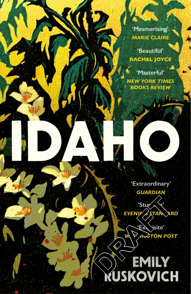 Idaho  by Emily Ruskovich - 9780099593959