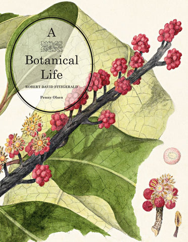A Botanical Life  by Penny Olsen - 9780642277718