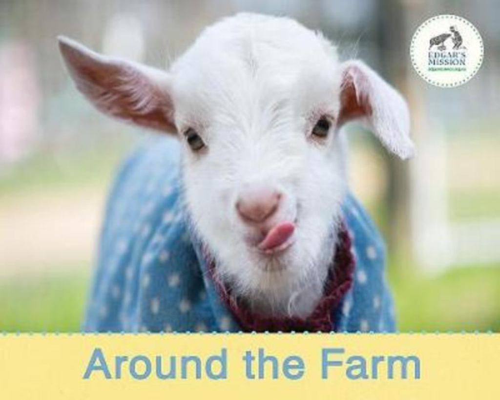 Around the Farm  by Edgar's Mission - 9780648368922