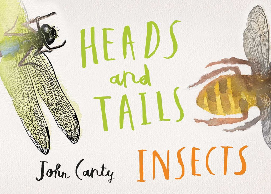 Heads and Tails  by John Canty (Illustrator) - 9780994384164