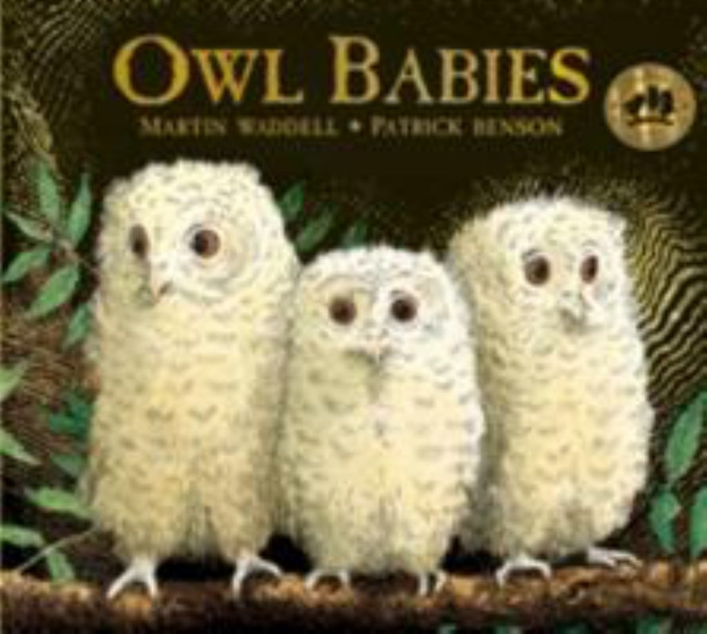 Owl Babies 25th Anniversary Edition Board Book  by Martin Waddell Martin - 9781406374377