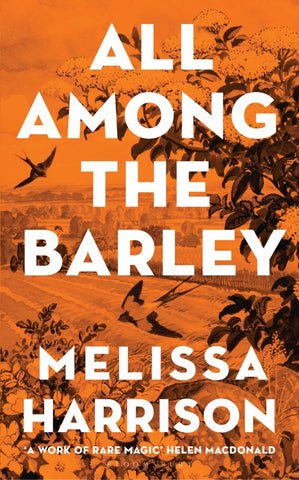 All among the Barley  by Melissa Harrison - 9781408897980