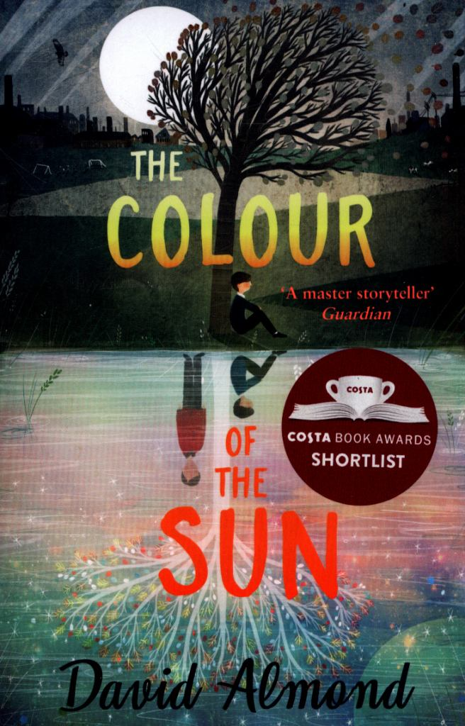 The Colour of the Sun  by David Almond - 9781444941135