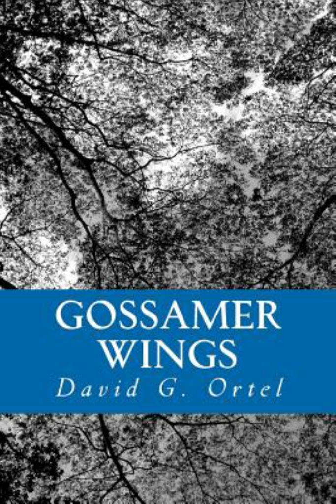 Gossamer Wings  by David G. Ortel - 9781466373990