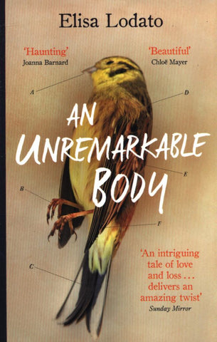 An Unremarkable Body  -