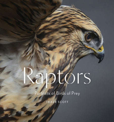 Raptors  by Traer Scott - 9781616895570