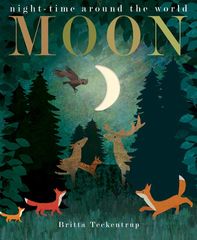 Moon  by Patricia Hegarty - 9781848696679