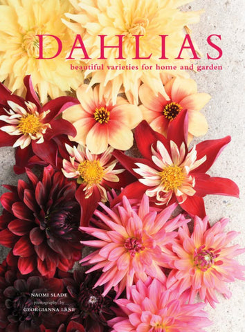 Dahlias  by Georgianna Lane (Illustrator) - 9781911595250