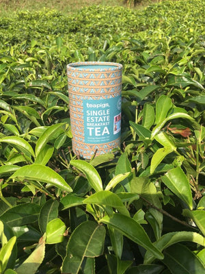 Single Estate Breakfast tea | teapigs